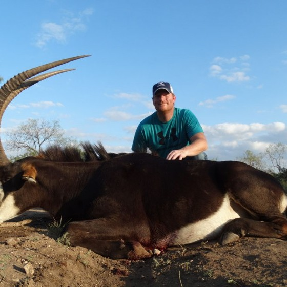 Sable Bull Hunts