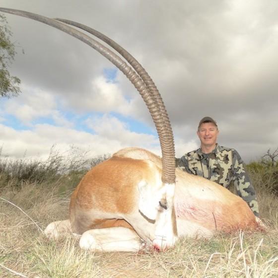 Scimitar Horned Oryx Hunts