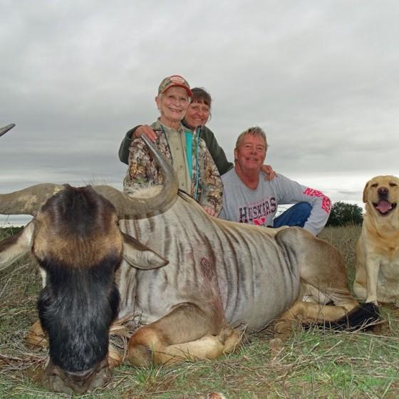 White Bearded Wildebeest Hunts